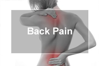 Back Pain Normal Illinois